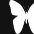 larart-farfalla